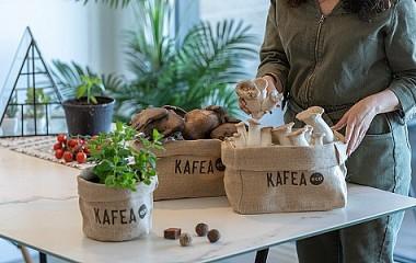 Kafea.eco | packaging eta salmenta online | Gipuzkoa