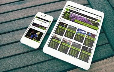 Legazpiko Udala | Desarrollo web responsive y redes sociales (Legazpi)